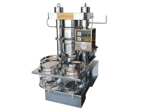ce automatic cold coconut oil press machine/oil expeller