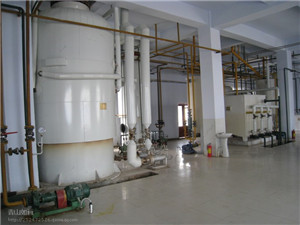 china manufacturer corn oil refining plant - ipras.org