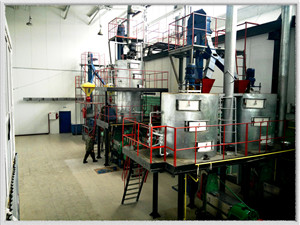 environment friendly capacity oil extraction machine