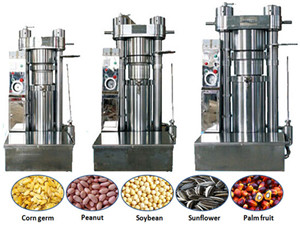 china sunflower seed automatic screw oil press machine