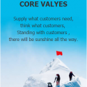 CORE VALYES